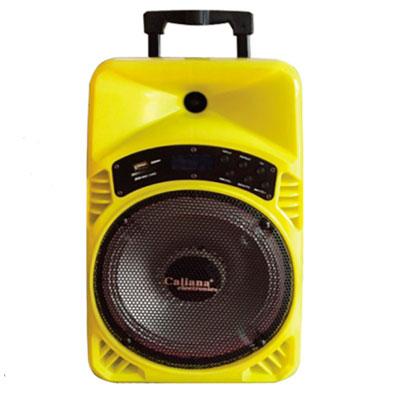 Loa kéo karaoke Caliana TX-08