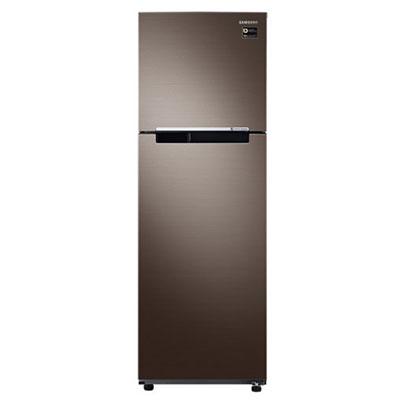 Tủ lạnh Samsung Inverter 256 lít RT25M4032DX/SV